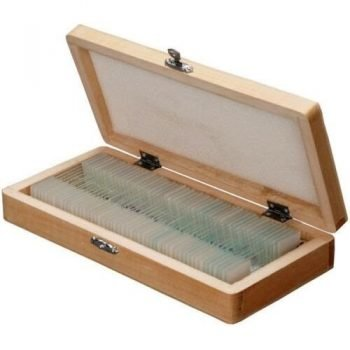 Microscope Glass Slide 72 pcs (gmbH)